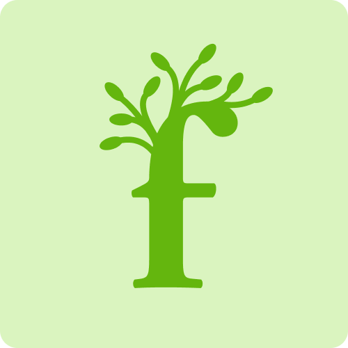 OurForest Blog